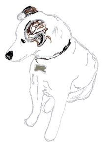 Zinzan The Dog
